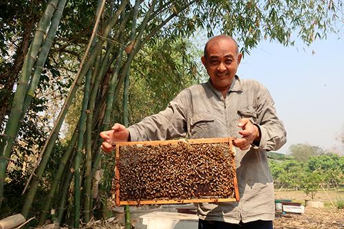 暑~い夏はハチミツの季節