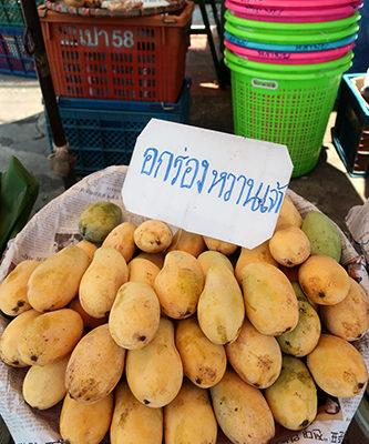 オックロン種のマンゴー